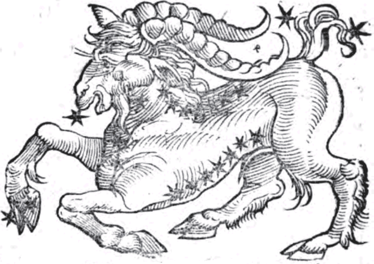 Capricorn by Guido Bonatti