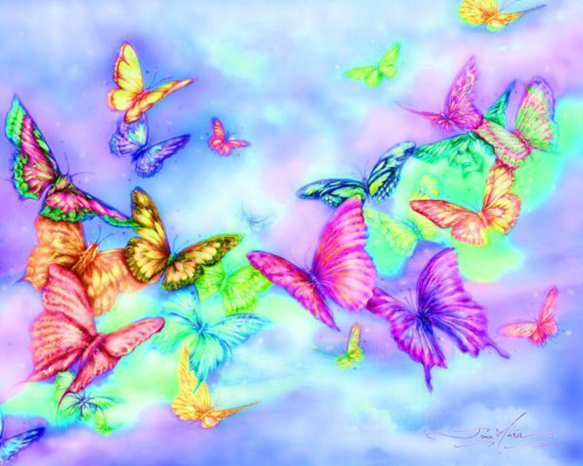 Butterflies and rainbows