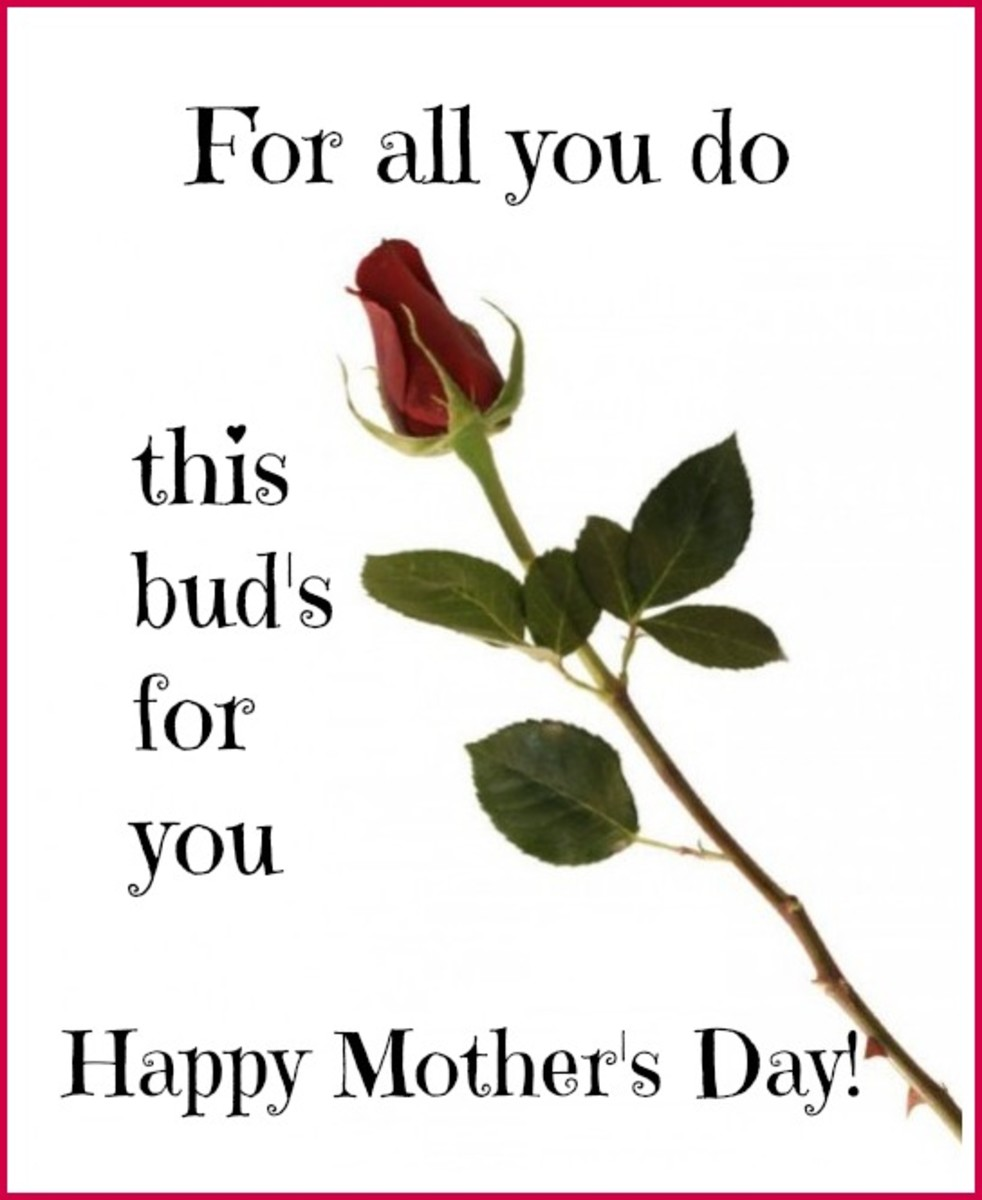 Funny Mother's Day Card with Rose Bud