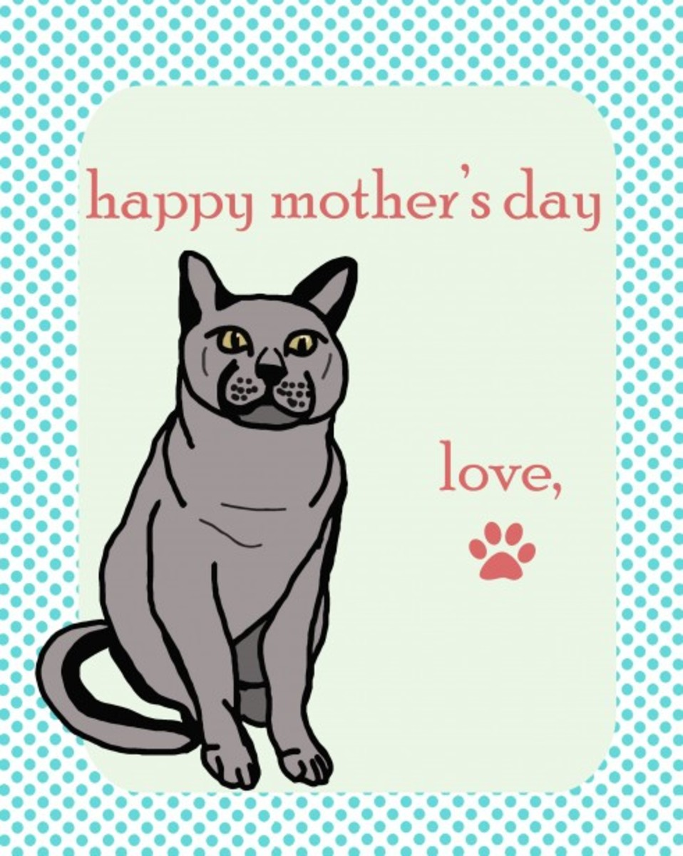 Mother's Day Card from Cat