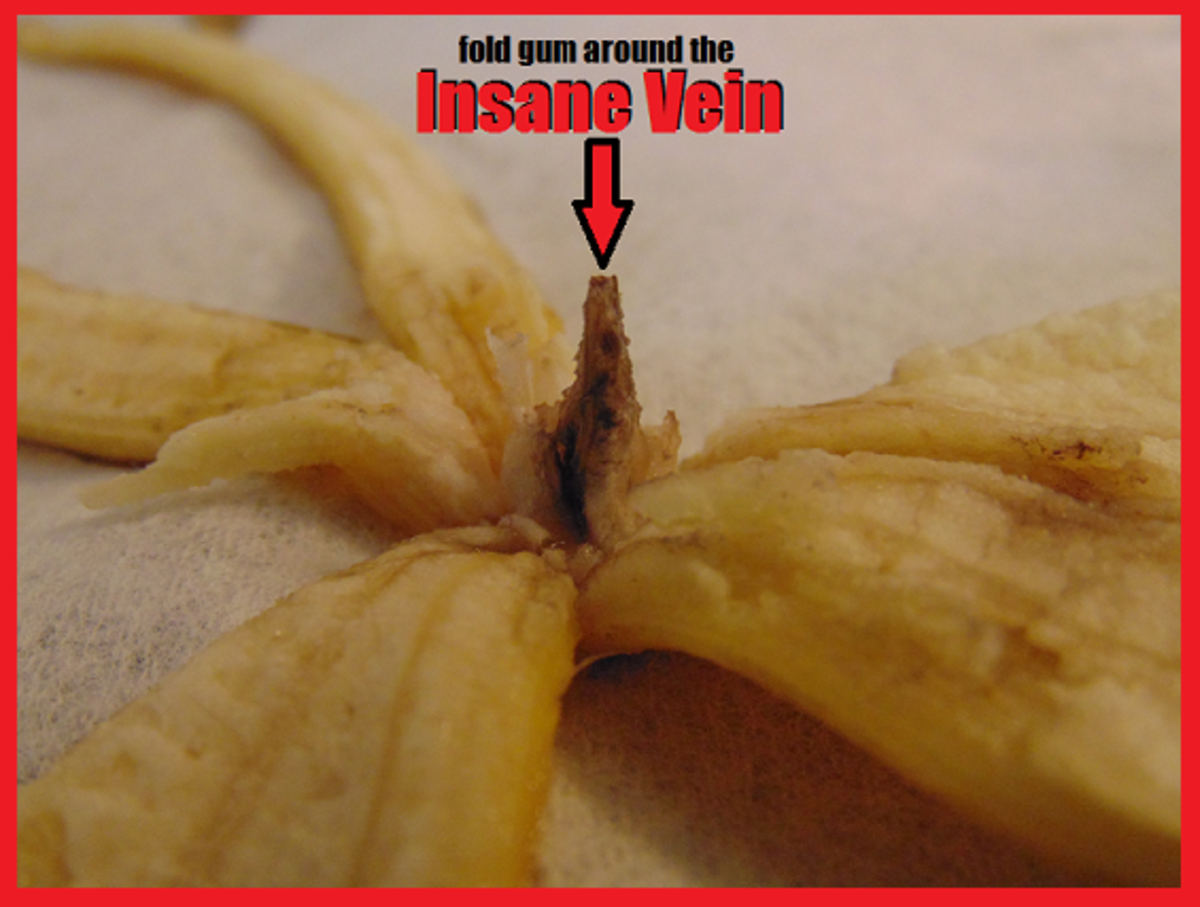 The INSANE VEIN of the banana is extremely fragile. Make sure INSANE VEIN is clear of any debris.