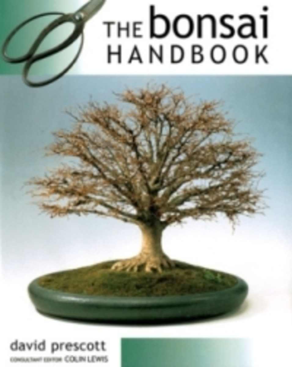 three-great-bonsai-books-for-your-level-of-experience