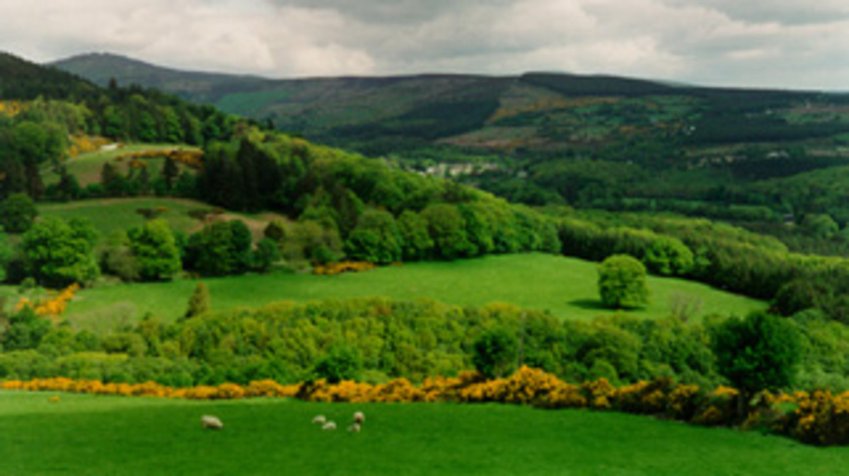 Irish landscape.  It is said in Ireland that the Irish landscape exhibits 40 different shades of green.