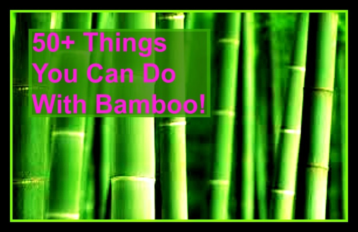 50 things you can do with bamboo