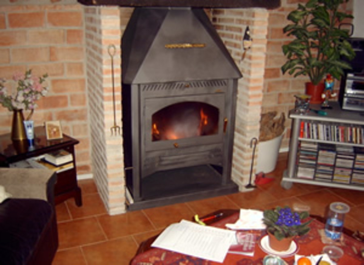 Glass fronted wood burning stove.