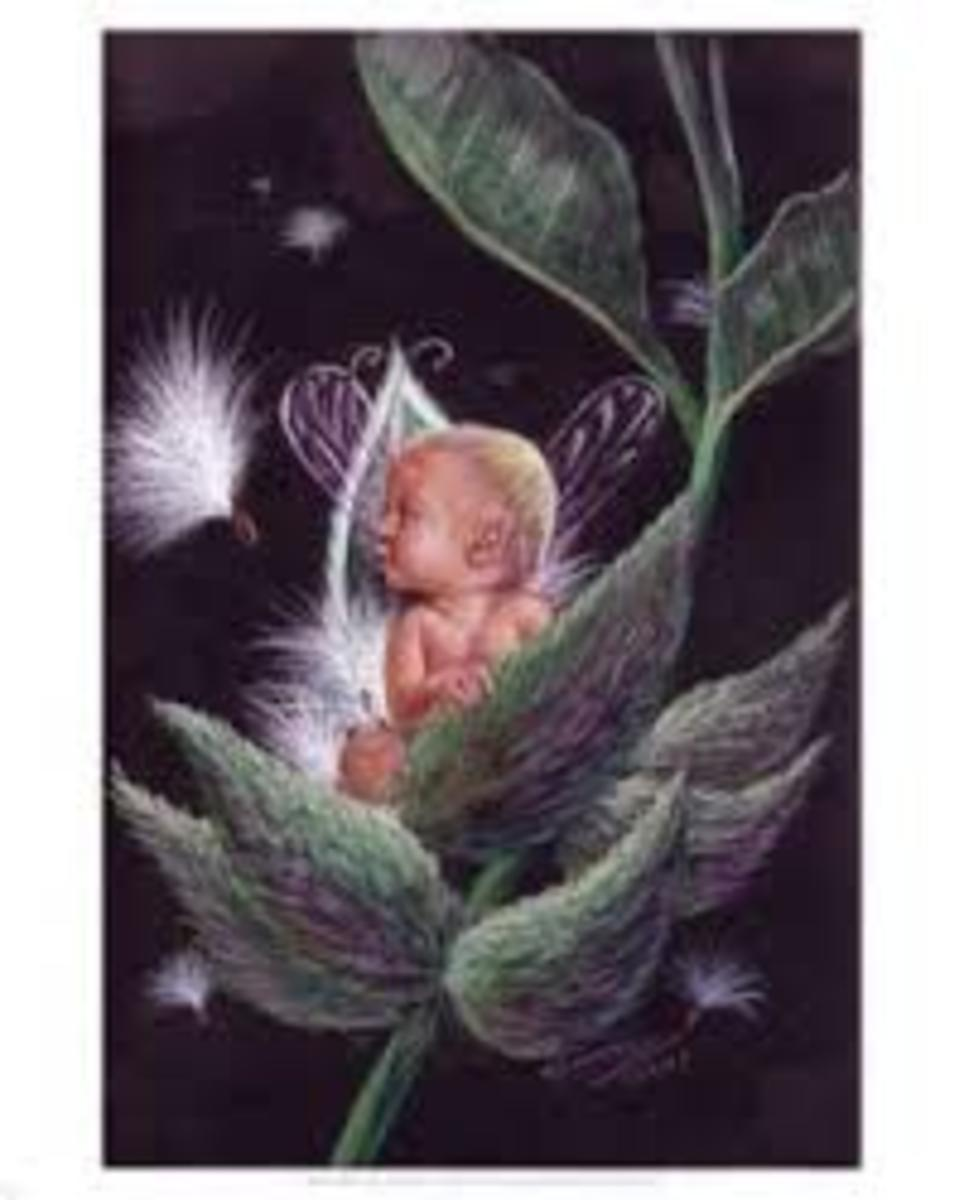 Baby faerie - a changling