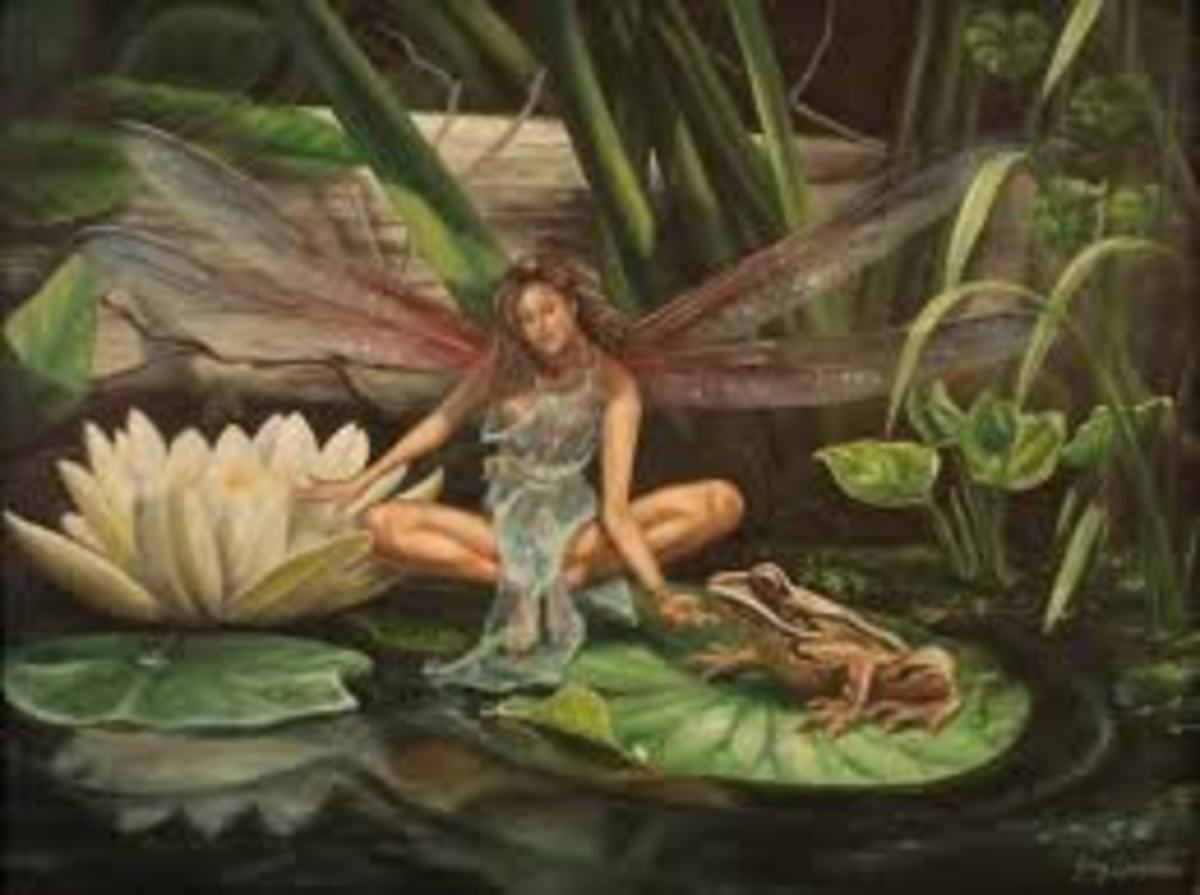 Faerie on lily pad with frog