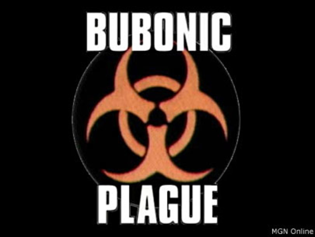 The Bubonic Plague - Could It Happen Again?