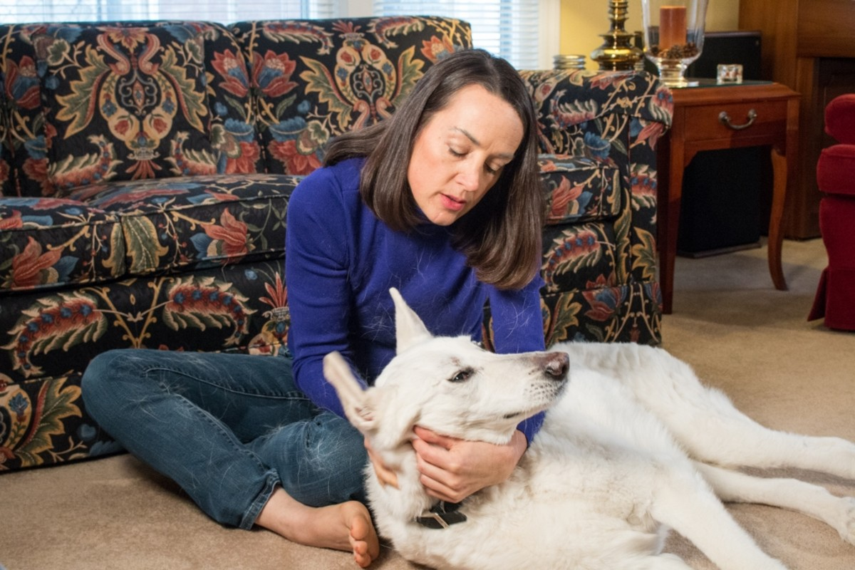As a pet parent, Dr. Alinovi understands how challenging dog health issues such as incontinence can be.