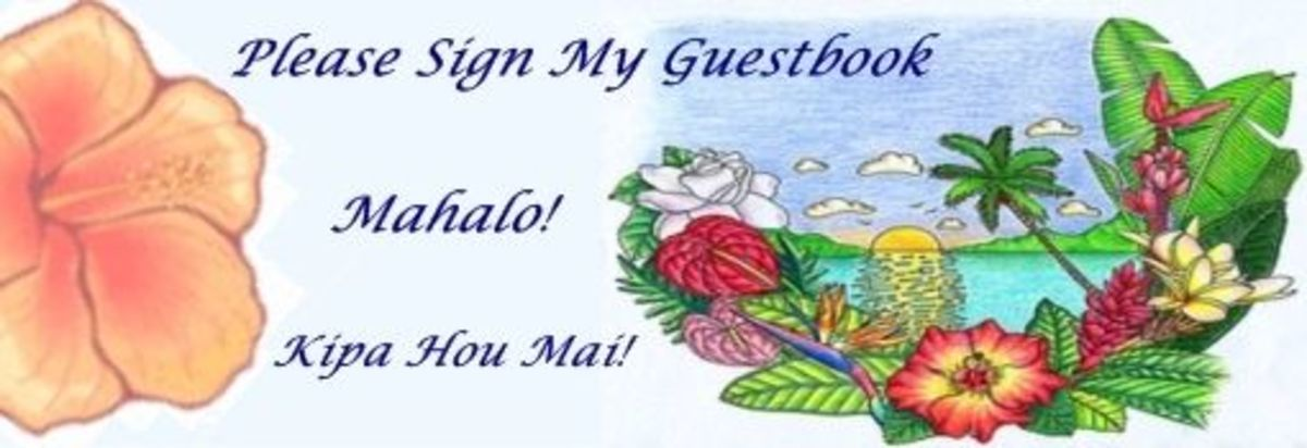 Squidoo Hawaiiaiian Fruit Punch Guestbook