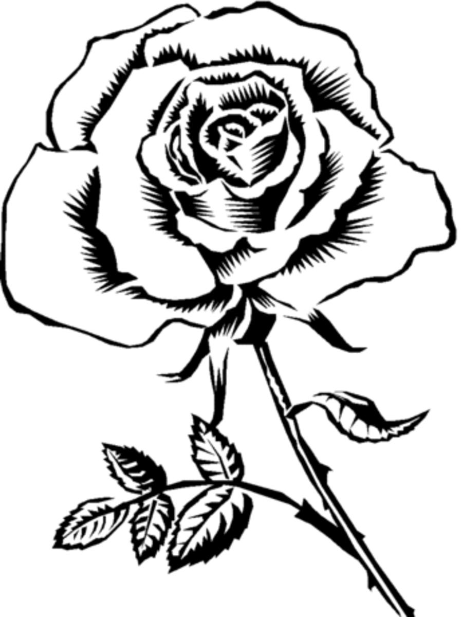 beautifulfloralcoloringpagesforkidsandadults