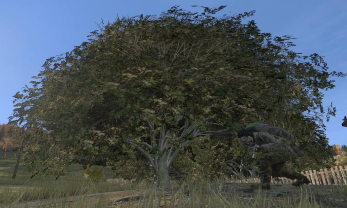 An Ashwood Stick is created when you chop down the Ashwood Tree.