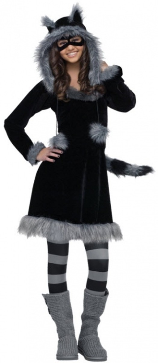 Raccoon Costume