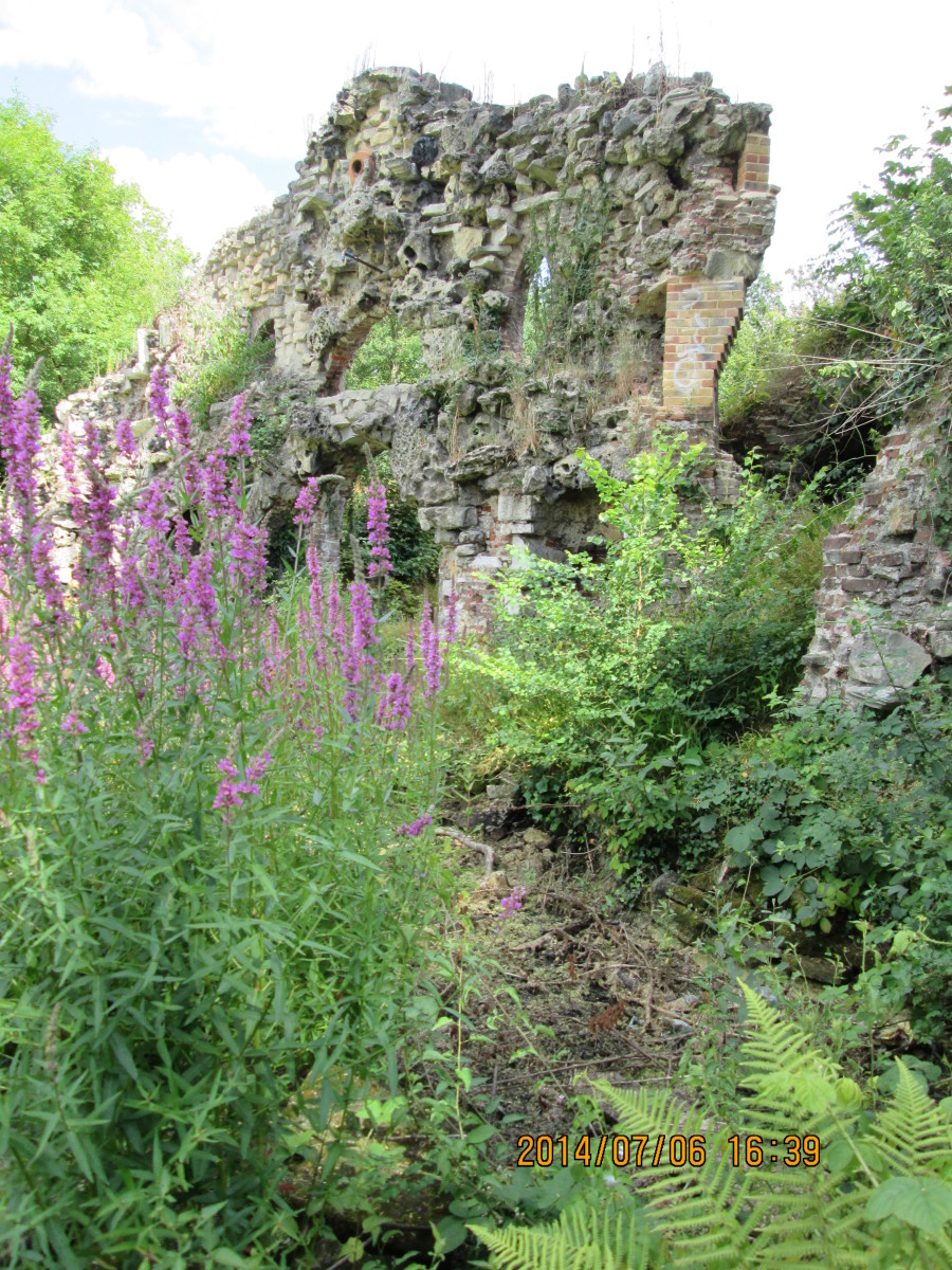 Another view of that grotto, this time from the front with more of the willow herb that flourishes on ruins and waste ground