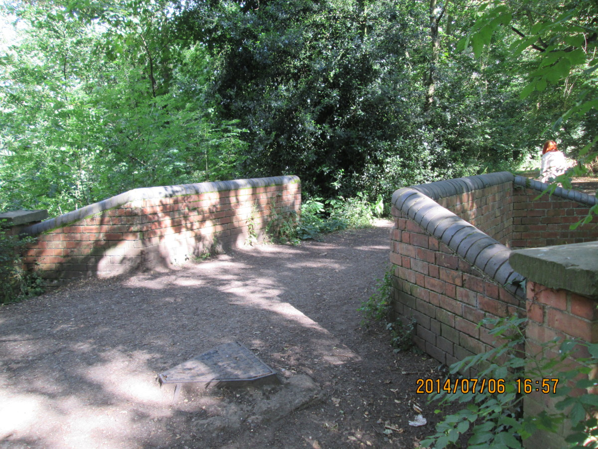A narrow bridge over a deep drainage channel that takes the overflow from the Perch Pond to the great lake to the east of here through what has become a jungle