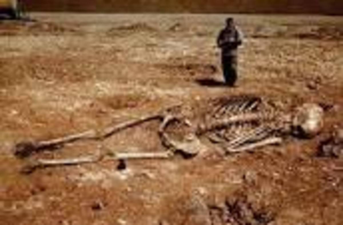Giant Skeleton Proves existence of Giants