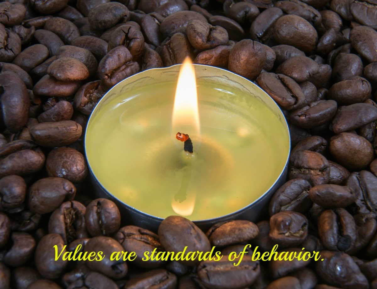 A value is a standard of behavior, a judgment about what is important.