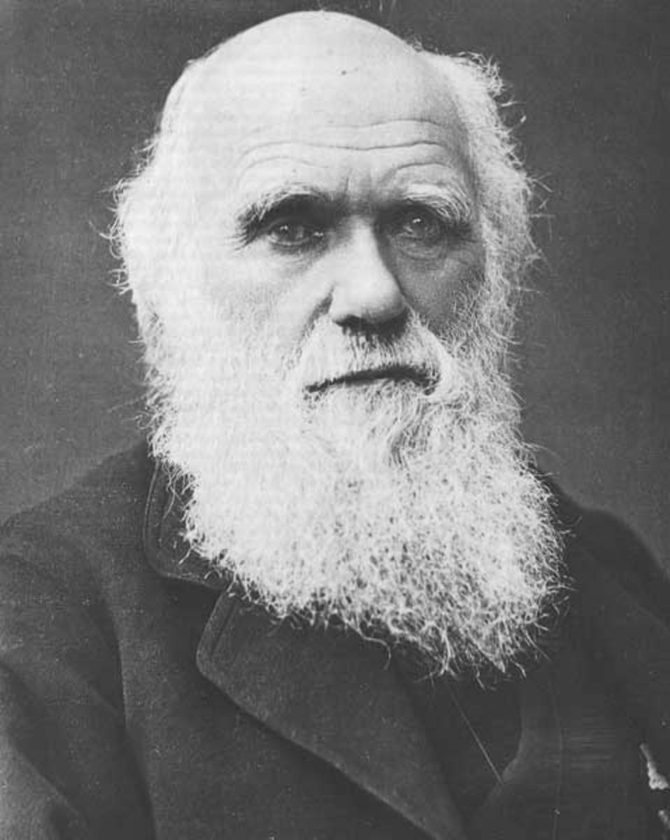 Charles Darwin - Godfather of Evolutionists