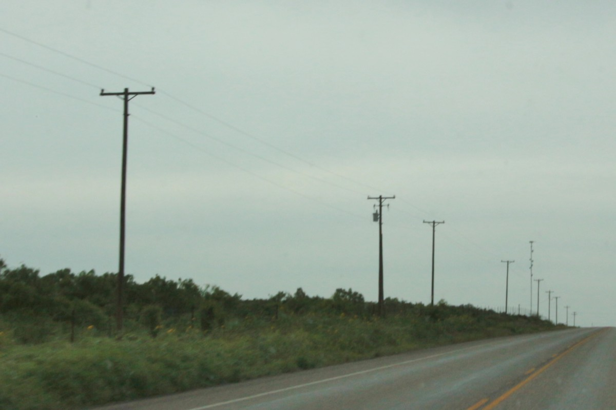 Power poles along Hwy 16.