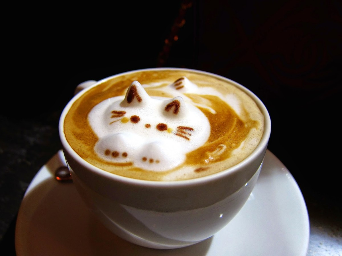 3d cat latte art