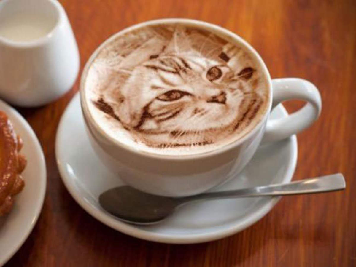 Realistic cat latte art