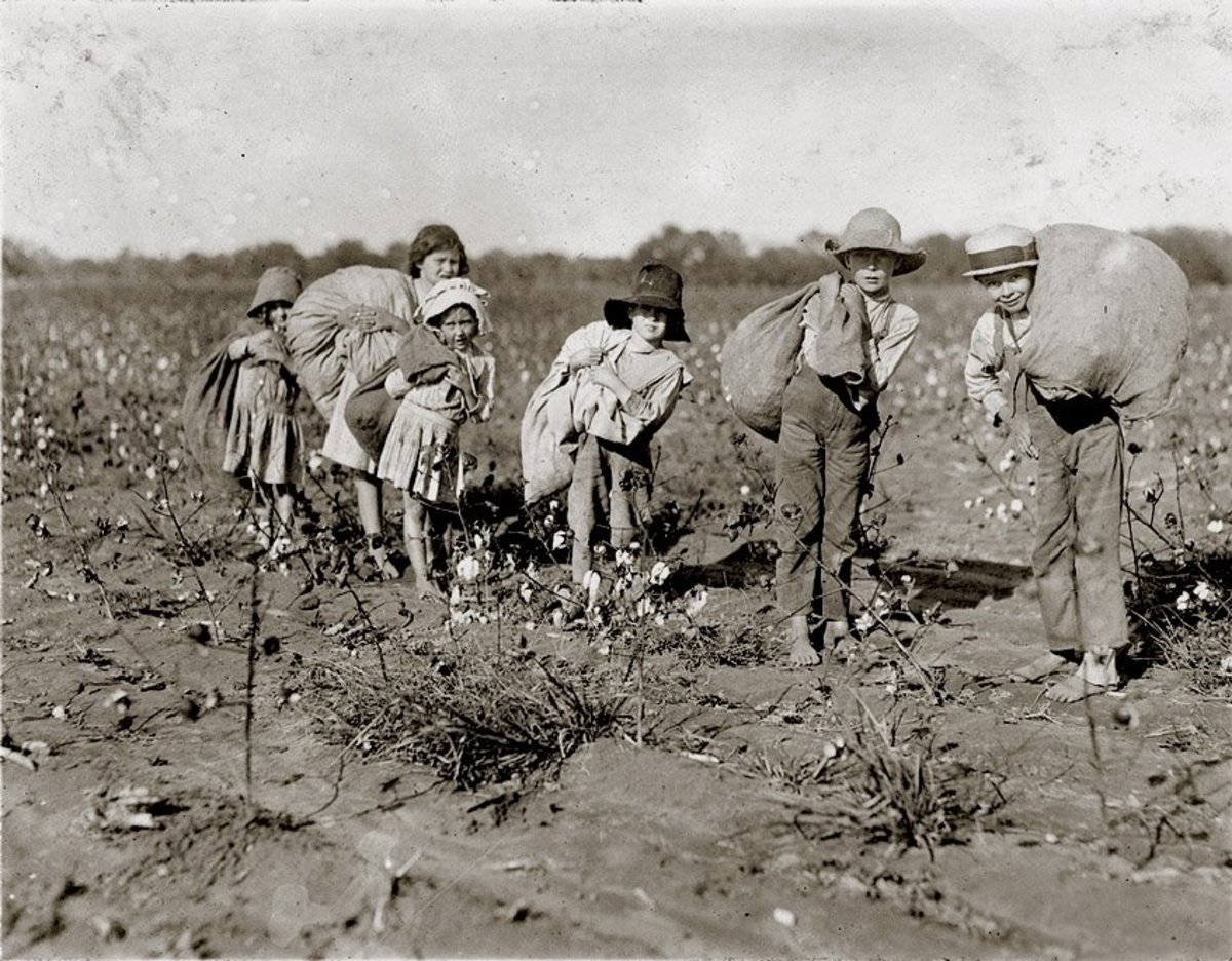this-is-a-cotton-picking-story