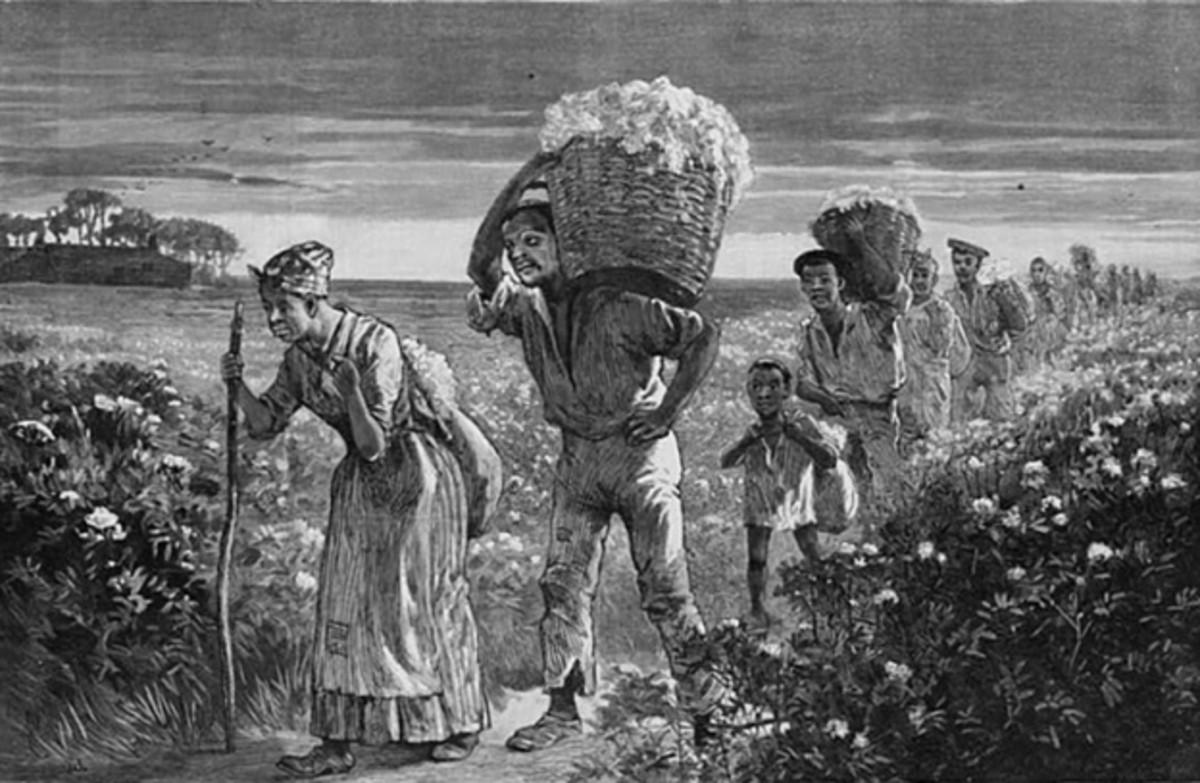 """""""Cotton picking in Alabama."""""""