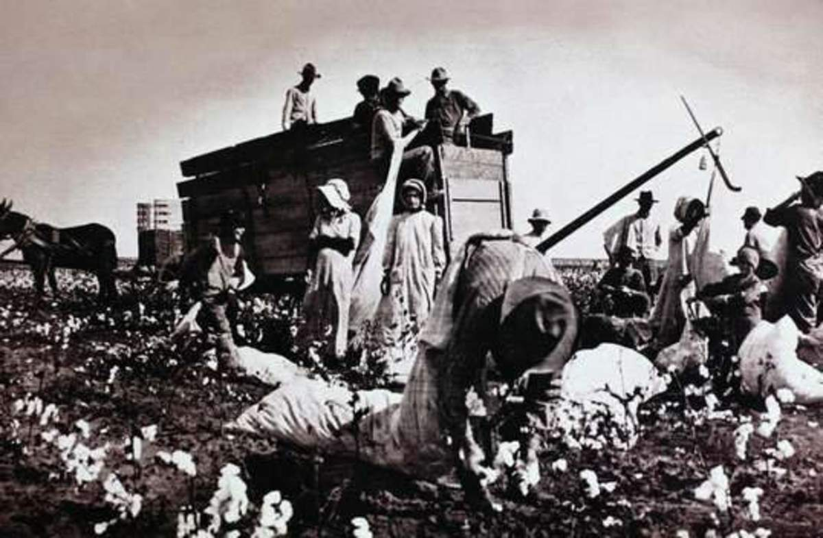 The cotton wagon: a welcomed sight.