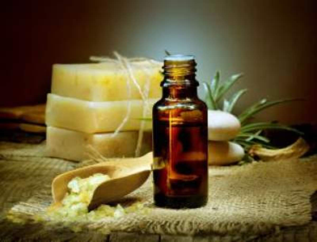 The properties of essential oils have been appreciated for many centuries.