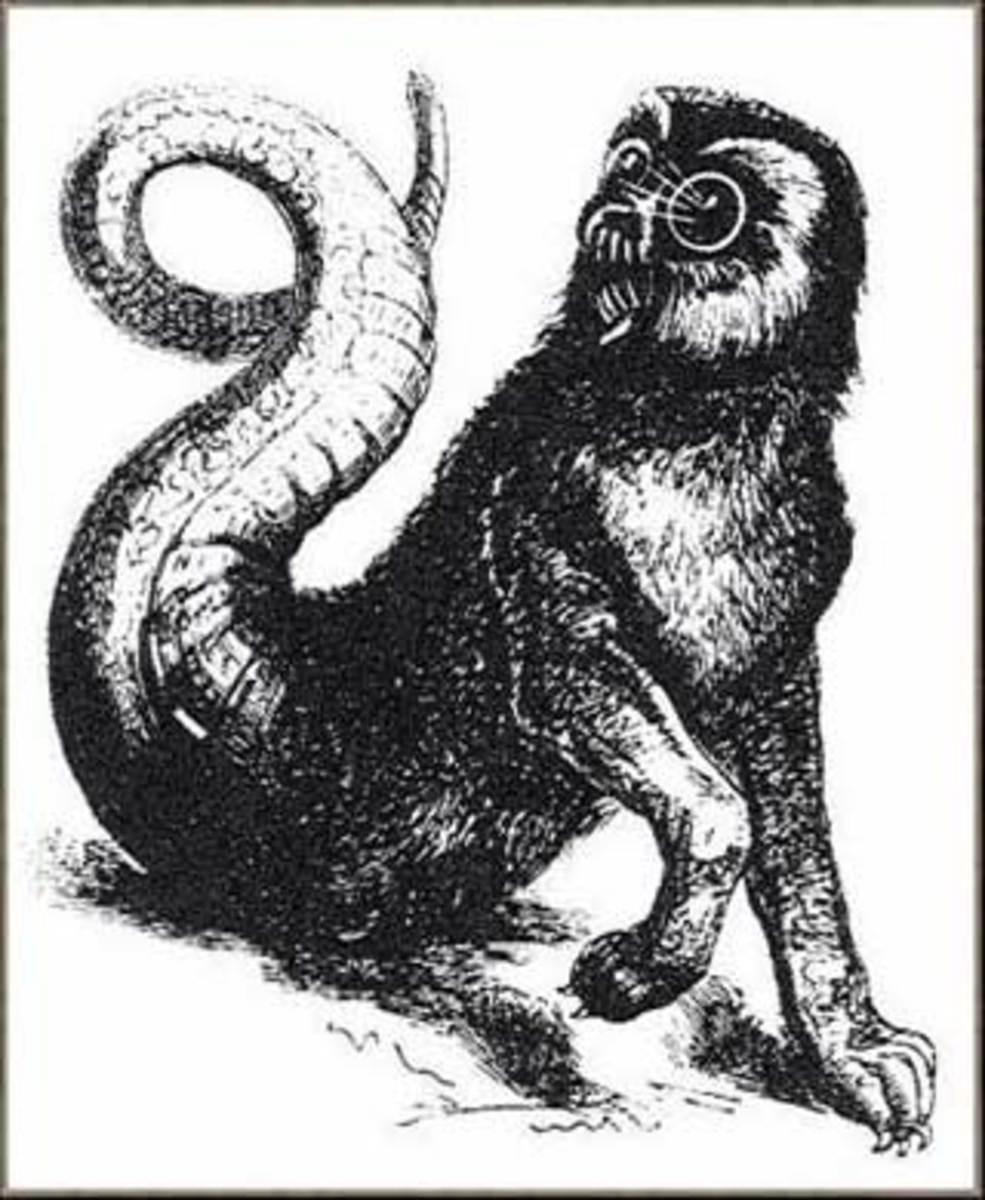 Artist rendering of Amon.