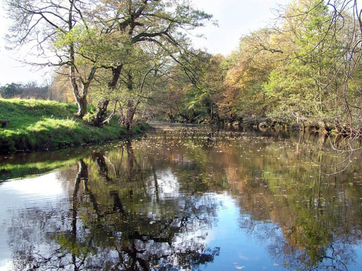 The River Derwent, Derbyshire.