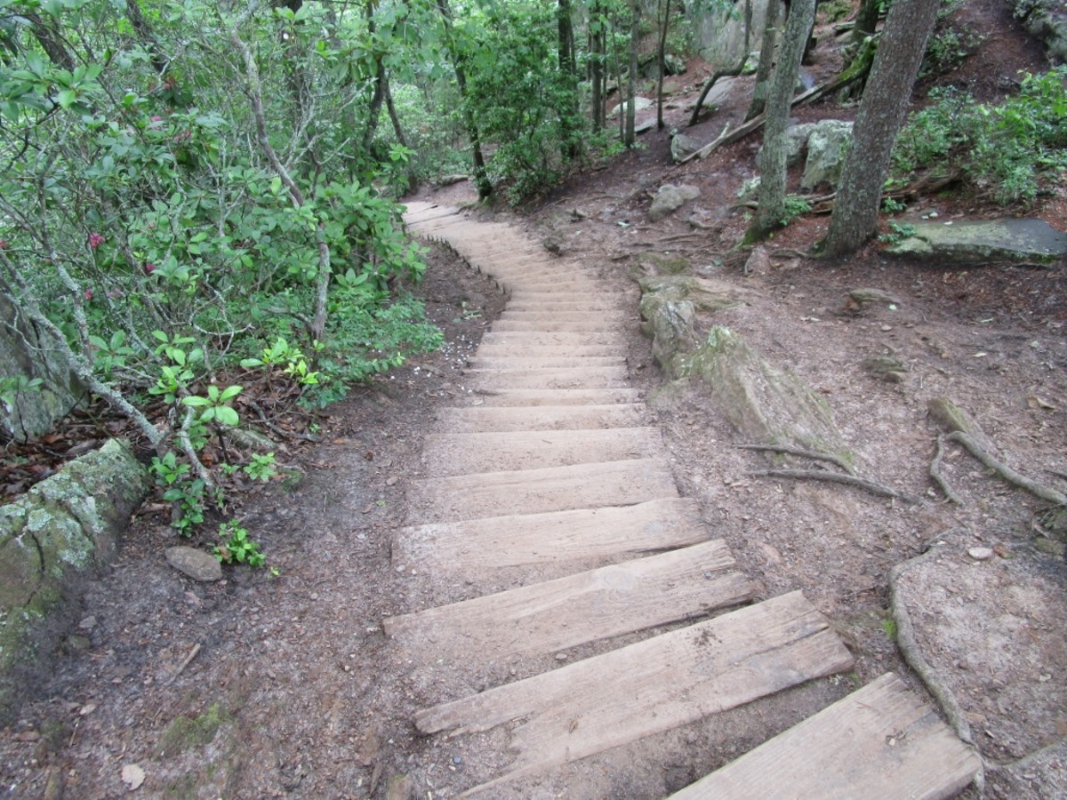 Stairs leading down towards Backside Trail / Linwood Road Access.