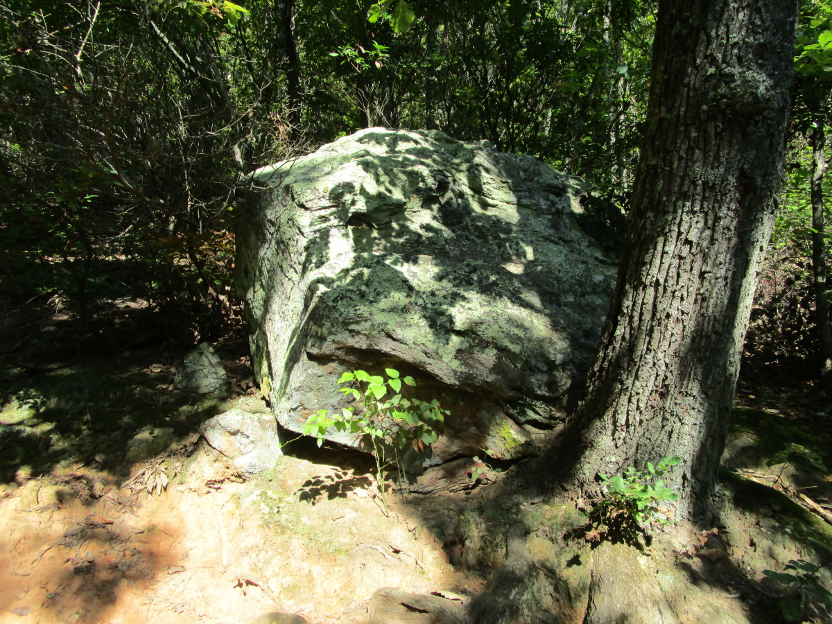 Sights while hiking along The Pinnacle Trail Crowders Mountain State Park Kings Mountain, NC