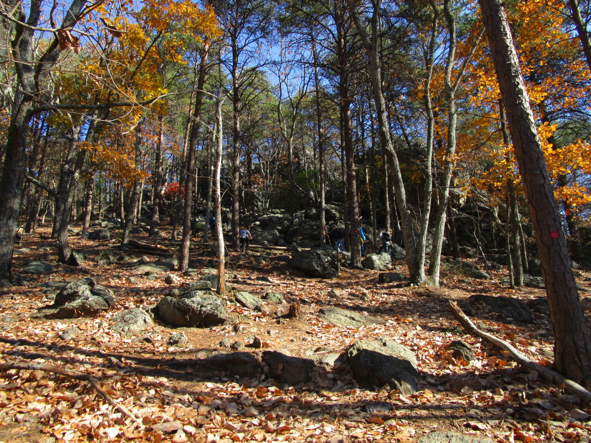 As you hike up the Rocktop Trail, it gets steep and very rocky. Watch your step!  Good sturdy hiking boots and hiking poles are recommended.