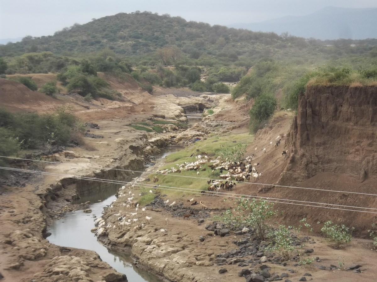 A scenic river gorge in the Kajiado County