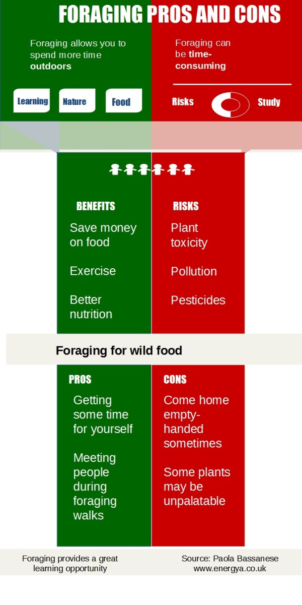 What Are the Pros and Cons of Food Foraging? A Learning Opportunity