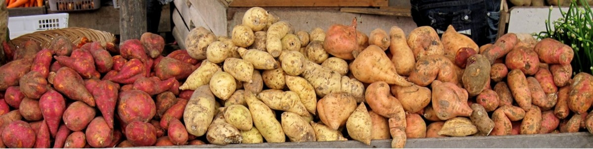 There are several variety of sweet potatoes all over the world. Not all of them can be grown from sweet potato cutouts. If however you can grow greens from potato cutouts, the greens can also eventually yield sweet potatoes.