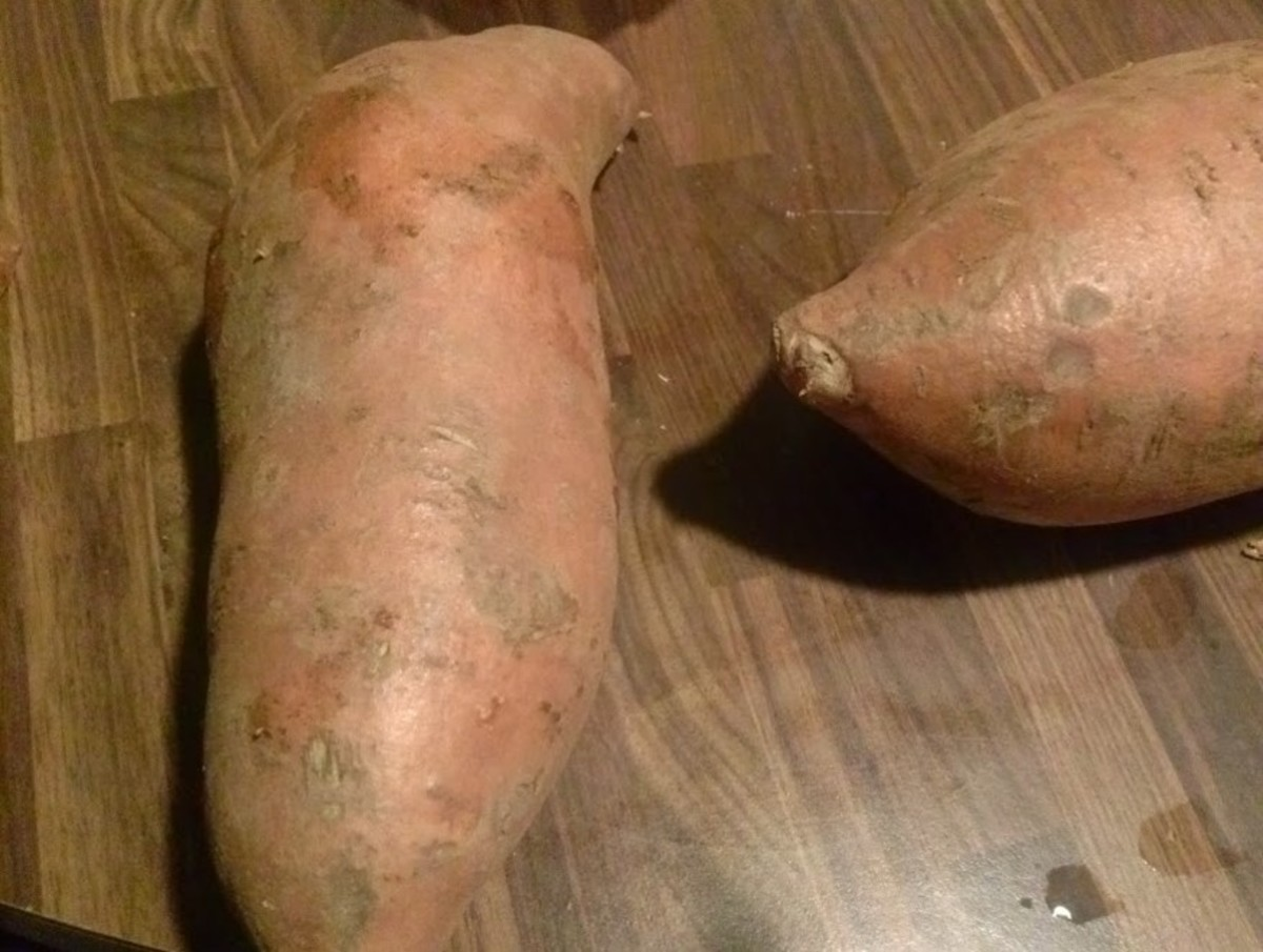 This is the orange fleshed sweet potato