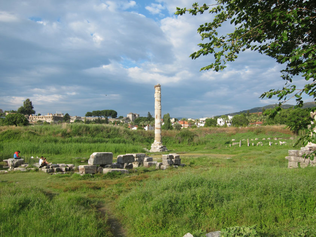 The only remain of what used to be the temple of Artemis in modern day Turkey...