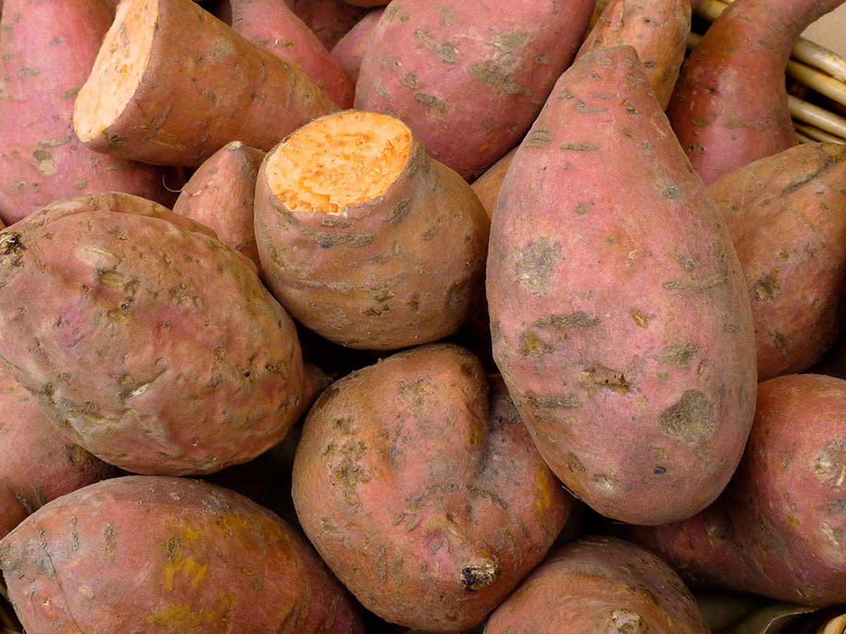 By Michaela Weingartova (Sweet potatoes) [CC BY 2.0 (http://creativecommons.org/licenses/by/2.0)], via Wikimedia Commons