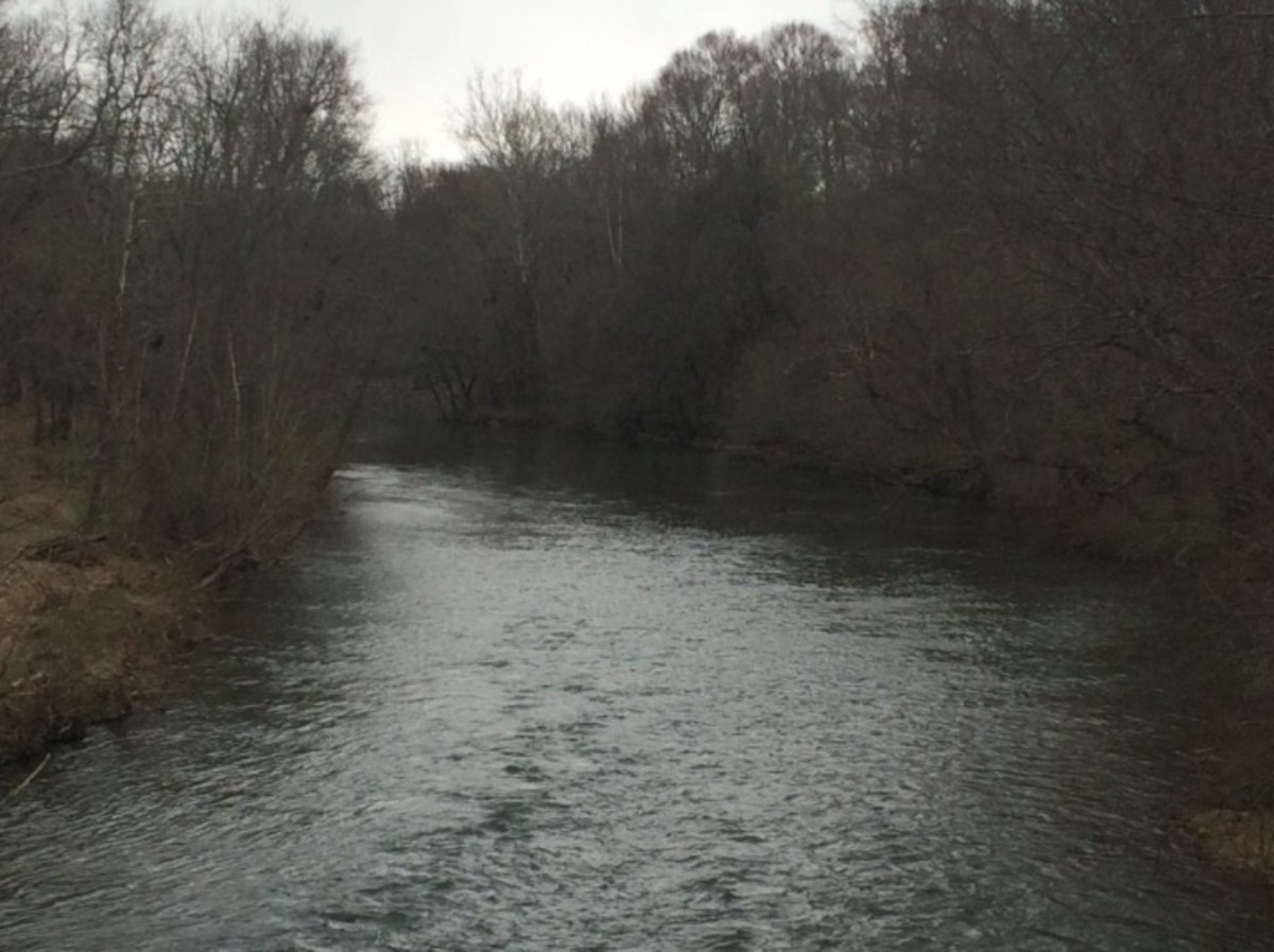 Barren Fork River in Crisp Springs