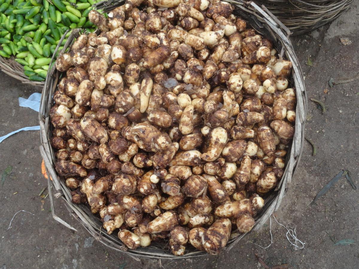 taro variety