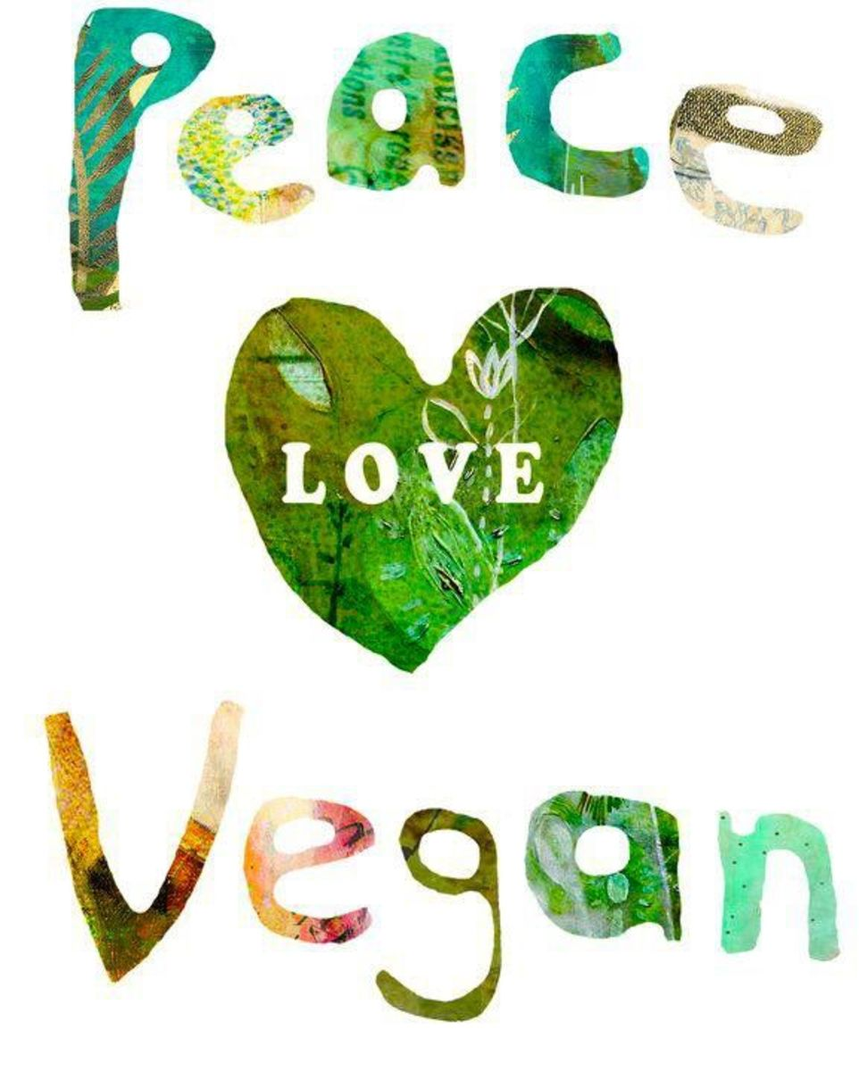 vegetarian-food-quiz
