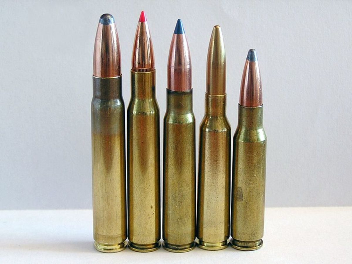 3 Awesome European Hunting Cartridges Americans Can Use Right Now (Proven Effective)