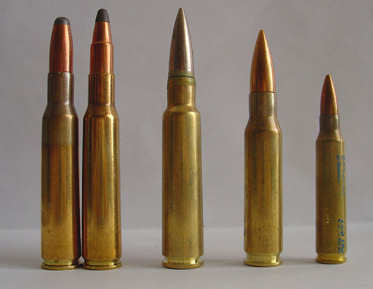 L-R: Two 7x57s, 8x57, .308 Win., .223 Rem.