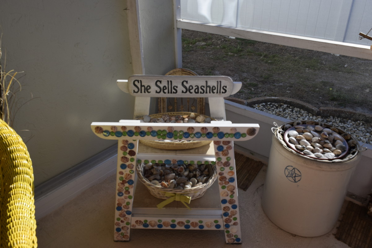 crafting-with-shells