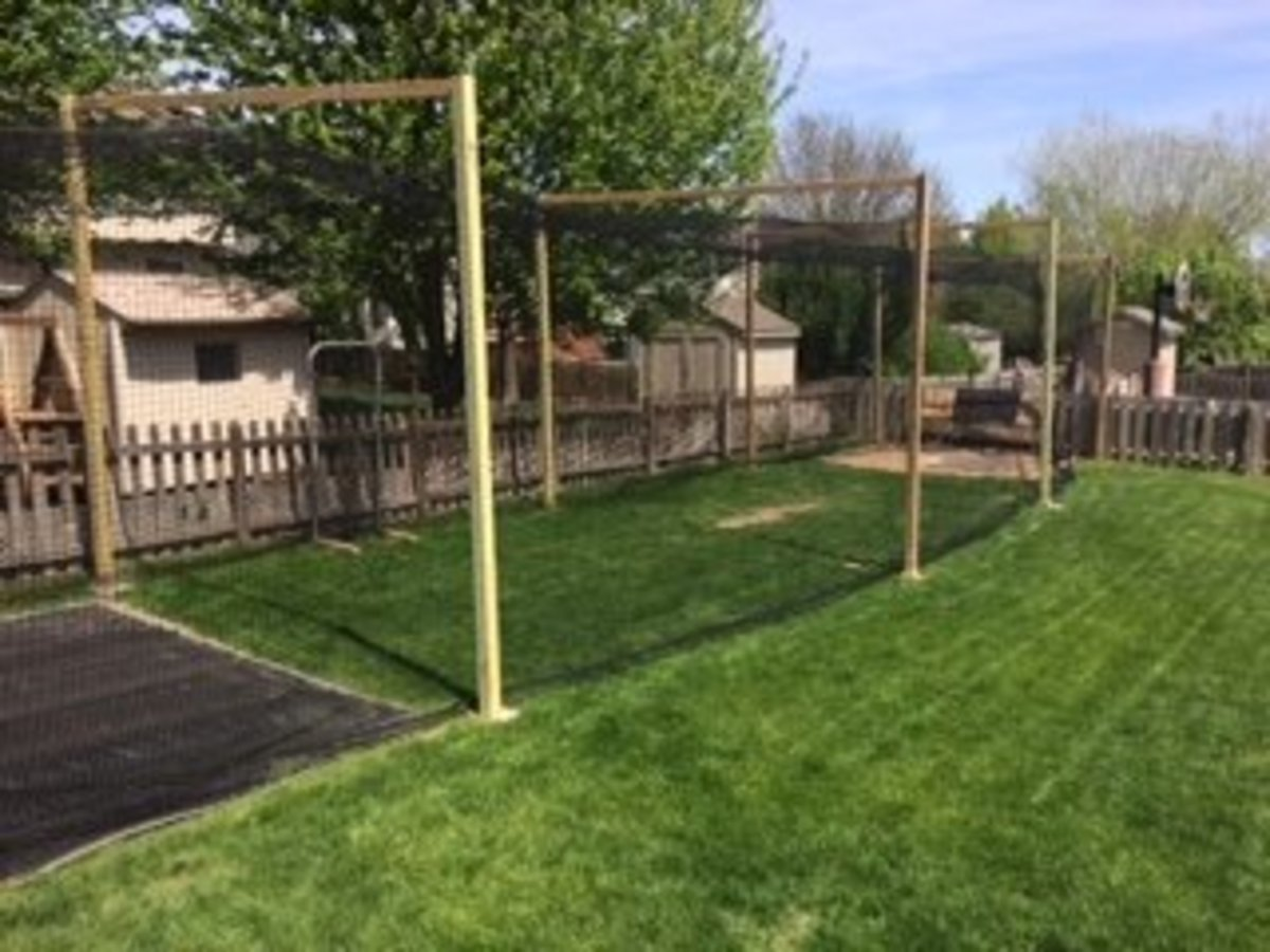 Attirant How To Build A Backyard Batting Cage