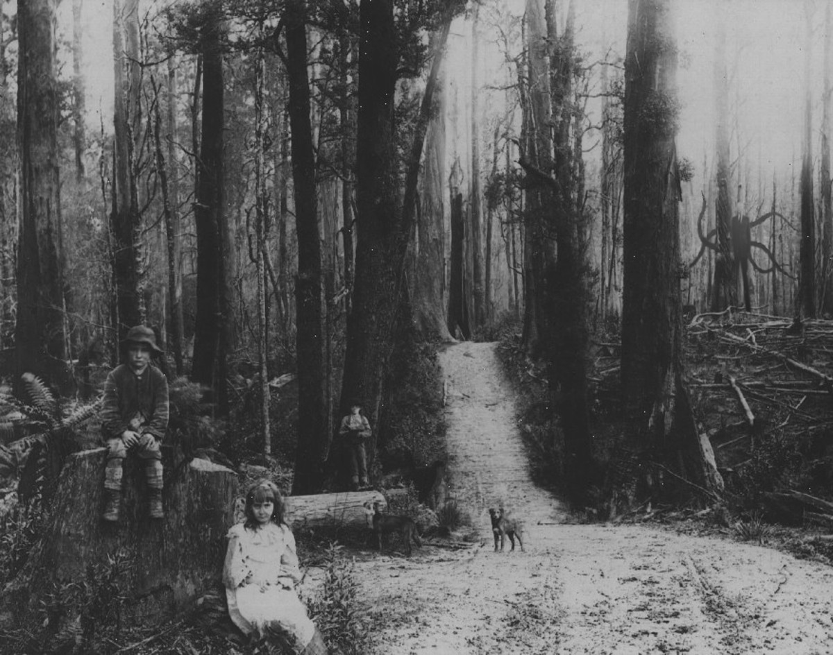 One of the first pictures I saw of the Slender man