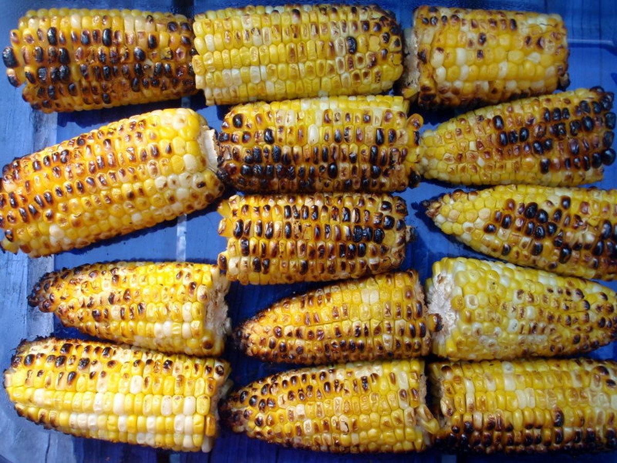 Corn on the cob cooked on grill
