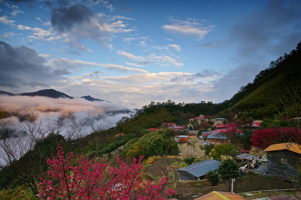 Only 23 families live in this remote village of Smangus in Taiwan, which has a system of eco-communalism in order to control and sustain tourism to the area, necessary since the world was made aware of the giant cypress trees growing in the area.